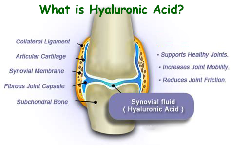 what is hyaluronic acid