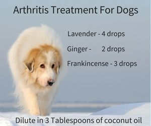 essential oil for dog arthritis